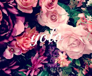 yolo, flowers, and pink image