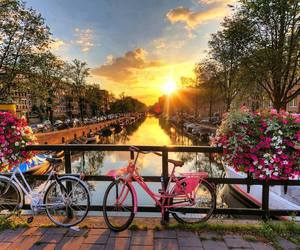 amsterdam, city, and flowers image