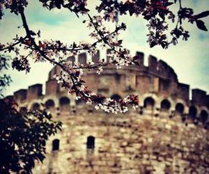 Greece, spring, and thessaloniki image