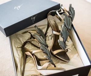 shoes, giuseppe zanotti, and heels image
