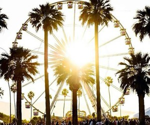 coachella, palms, and sun image