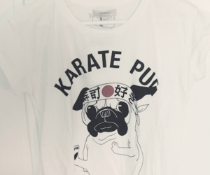 japan, karate, and pug image
