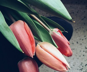 color, flowers, and life image