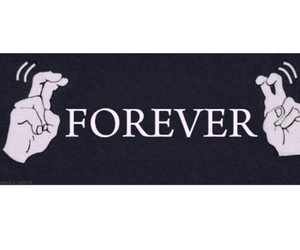 forever, lies, and friends image
