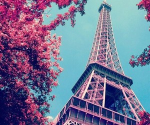 paris, pink, and Dream image