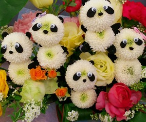bouquet, flowers, and cute image