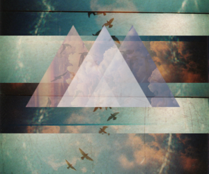 hipster, wallpaper, and bird image