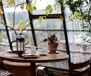 coffee, photography, and window image