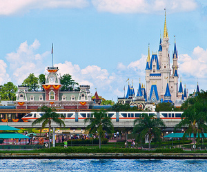 beautiful, mickey mouse, and orlando image