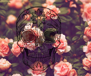 flowers, skull, and rose image