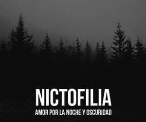 night, nictofilia, and Darkness image