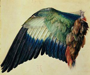 wing, bird, and art image