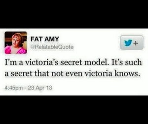 funny, fat amy, and model image