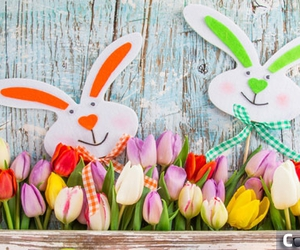 easter, easter bunny, and tulips image