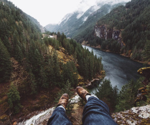 forest, hipster, and indie image