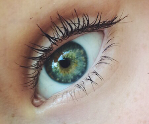 eyes, green, and tropical image