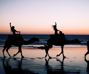 beach, camel, and girl image