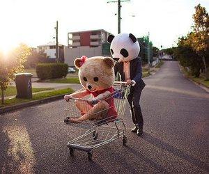 bear, market, and street image
