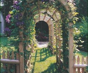 arch, flowers, and outdoors image