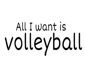 amazing, my life, and volleyball image