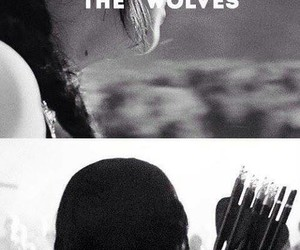 wolf, katniss, and hunger games image
