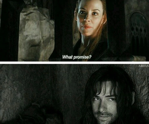 the hobbit, kili, and tauriel image