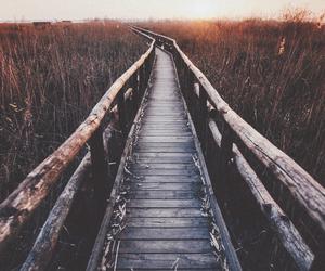 nature, bridge, and travel image