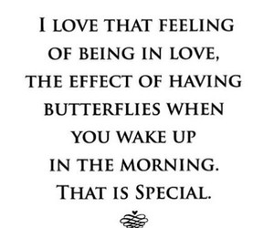 butterflies, morning, and quotes image