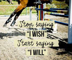 horse, motivation, and quotes image
