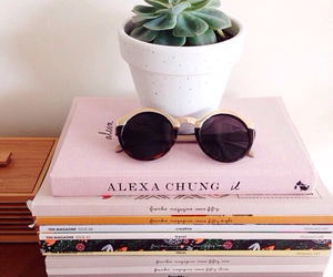 books, succulent, and sunglasses image