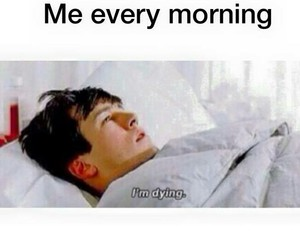 funny, bed, and morning image