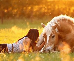 horse, girl, and gif image