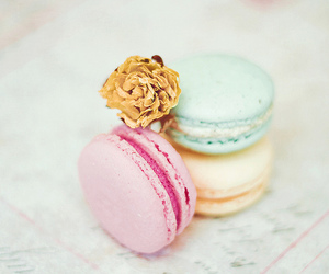 macaroons, delicious, and flowers image