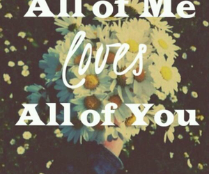 love, all of me, and flowers image