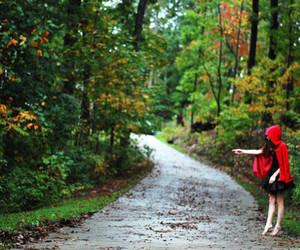 chapeuzinho vermelho, floresta, and Dream image