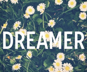dreamer, flowers, and Dream image