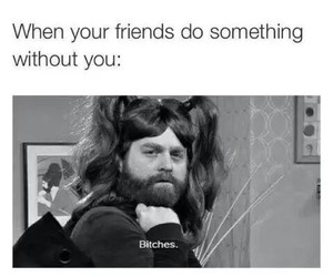 funny, friends, and bitch image