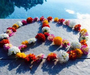 peace, flowers, and colorful image