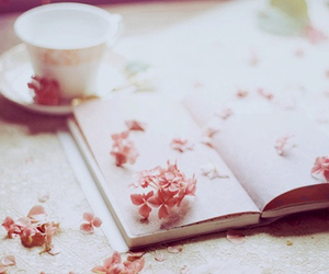 pink, book, and cute image