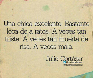 frases, girl, and julio cortazar image