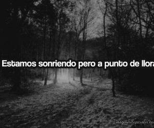 cry, smile, and frases image