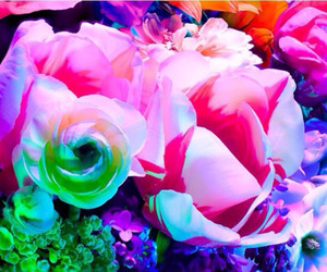 bright, florals, and flowers image