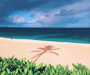 adventure, beach, and free image