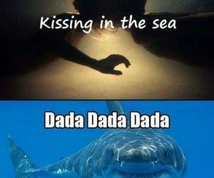 funny, shark, and sea image