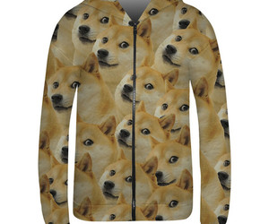 dogs, fashion, and hoodie image