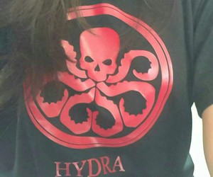 hydra and agents of shield image