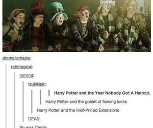 funny, hair, and harry potter image