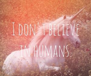 unicorn, believe, and humans image