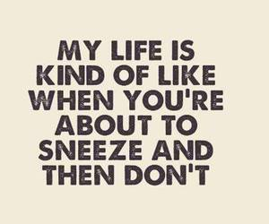 life and sneeze image