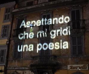 italian, timi, and lights image